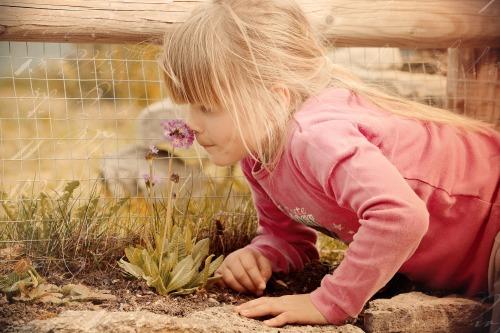 odeurs enfance.jpg