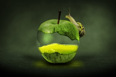 pomme-escargot-gout-eaudesoi.jpg