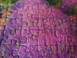 eaudesoi-details-histoire-puzzle-fraction